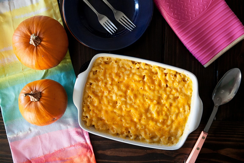 Homemade mac and cheese recipe with creamy pumpkin pasta sauce is the best comfort food. It's so easy to make! This cheesy pumpkin mac and cheese recipe uses 1 cup pumpkin purée and 2 cups shredded cheddar cheese. It turns out so delicious, ultra creamy, and flavorful - my favorite homemade macaroni and cheese recipe for fall!