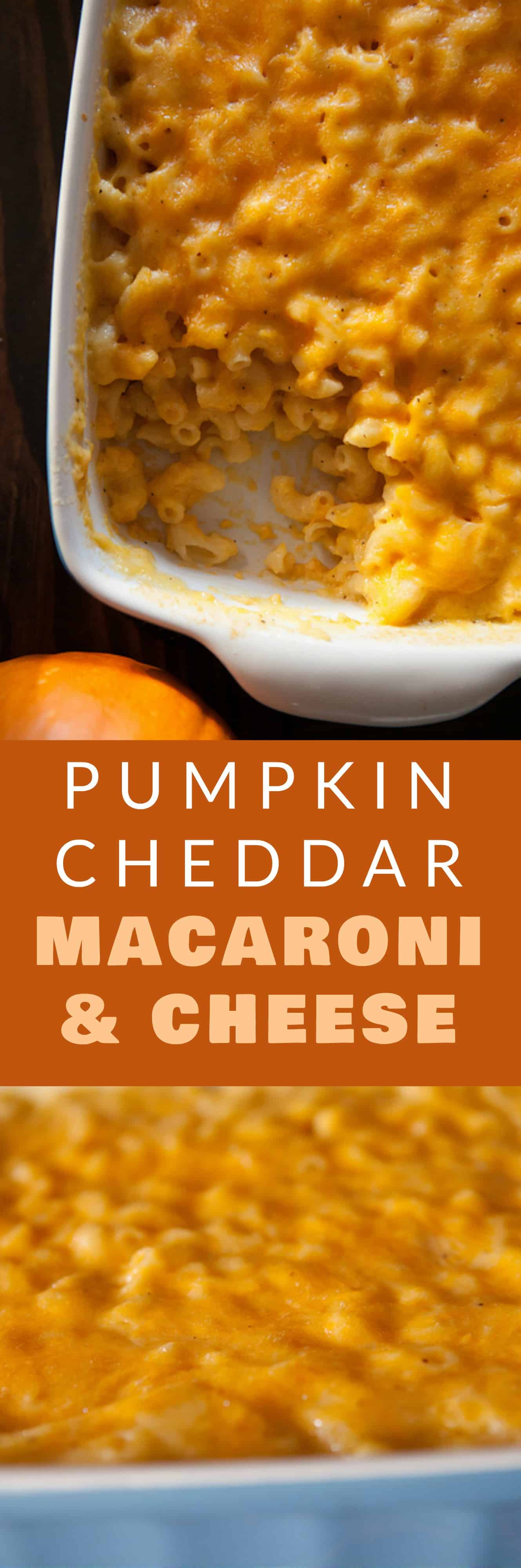 PUMPKIN CHEDDAR Macaroni and Cheese! This is a pure comfort food recipe that's so easy to make! This cheesy macaroni and cheese uses 1 cup pumpkin puree and 2 cups shredded cheddar cheese. It's one of my favorite pumpkin recipes!