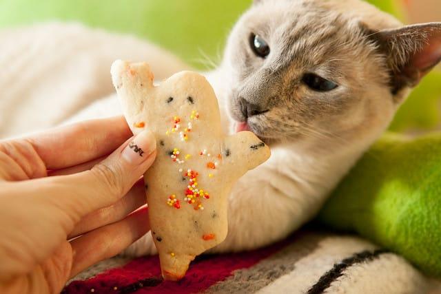 Funfetti Ghost CookiesIMG_7595