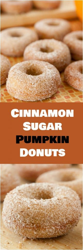 BAKED, Cinnamon Sugar Pumpkin Cake Donuts! This easy homemade recipe makes soft and delicious Pumpkin Sugar Donuts! Recipe makes 1 dozen donuts. One of the BEST Fall Pumpkin dessert recipes!
