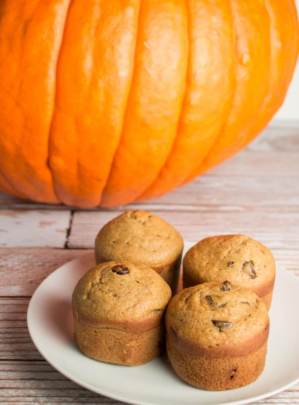 Moist and DELICIOUS Chocolate Chip Pumpkin Muffins!  You won't believe how easy this recipe is! My family considers these the best pumpkin desserts! These are easy to turn into a gluten free recipe too!