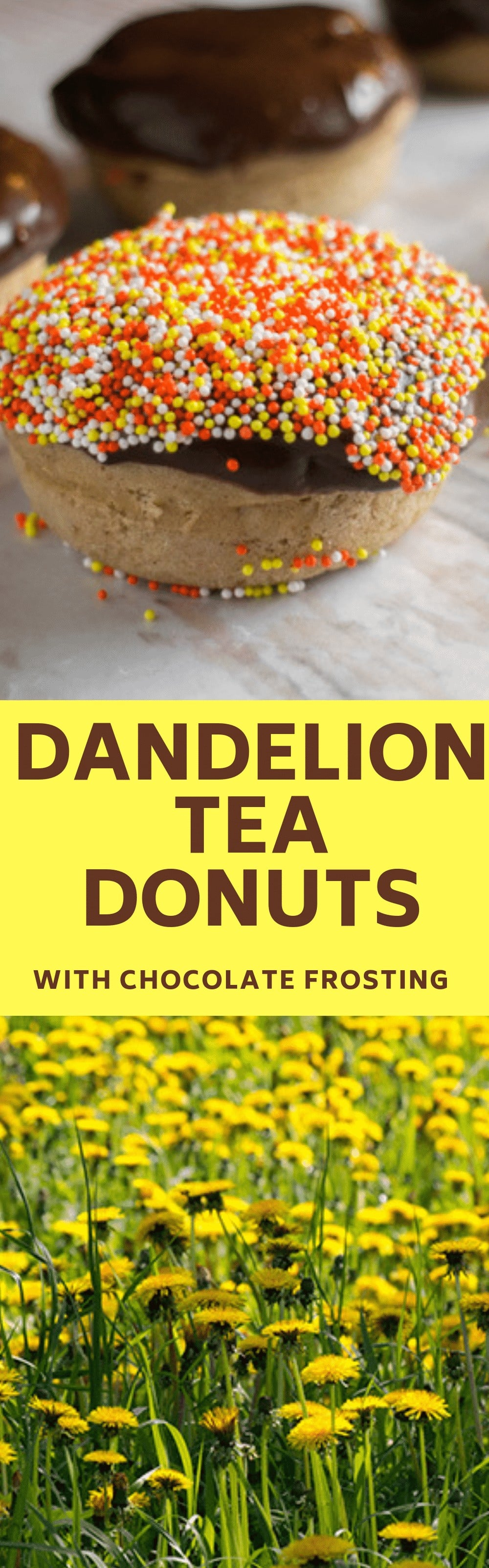 Dandelion Tea Donuts With Chocolate Frosting recipe. Dandelion tea is filled with healthy benefits so enjoy these donuts for breakfast or dessert. Includes a dairy free donut recipe too.