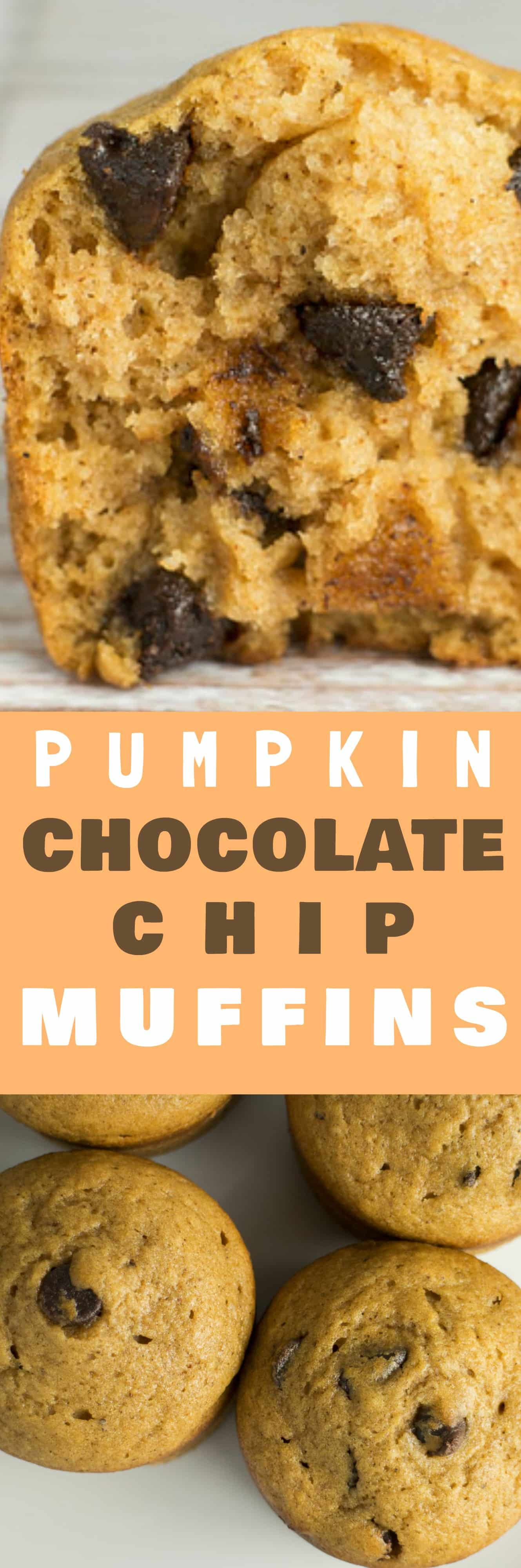 Moist and DELICIOUS Pumpkin Spiced Chocolate Chip Muffins! You won't believe how good these are considering how easy they are to make! My family considers these the best pumpkin dessert! These are easy to turn into a gluten free recipe too!