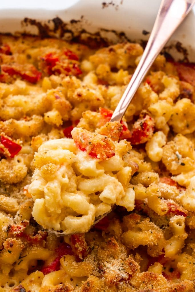 spoon filled with macaroni and cheese in baking dish.
