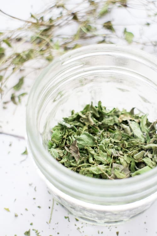 How to Dry Mint for Tea Leaves_7