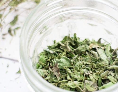 How To Make Mint Tea And How To Dry Mint Leaves