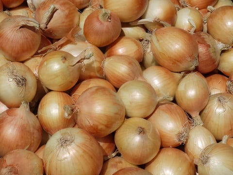 How To Store Onions Using Pantyhose. This is a great and cheap way to store onions to make them last for months.