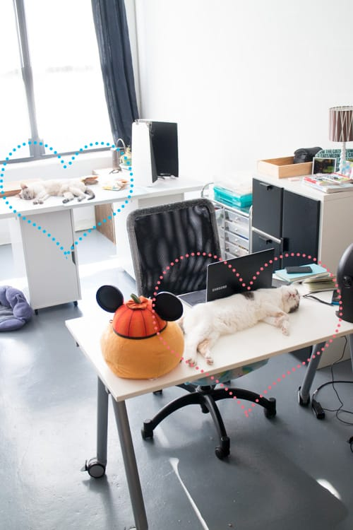 A-Look-Into-My-Office,-Trying-to-Stay-Organized_20