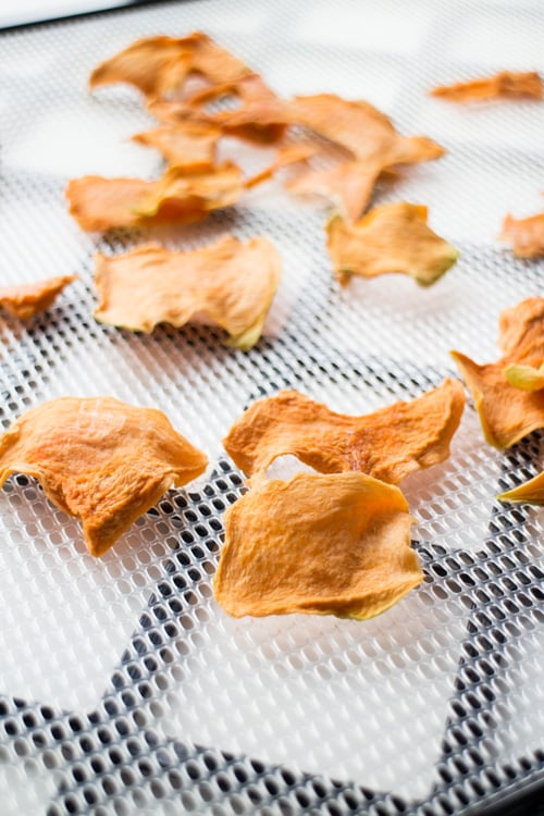 Easy step by step instructions with pictures on how to make Cantaloupe Chips! This is a healthy and easy snack to make!