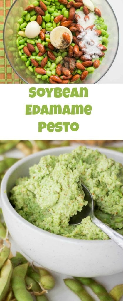 Soybean Edamame Pesto, a easy and delicious pesto recipe using soybeans! Use this as a appetizer dip or serve over pasta.