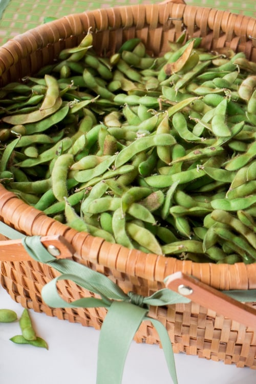 Soybean Edamame Pesto, a easy and delicious pesto recipe using soybeans!