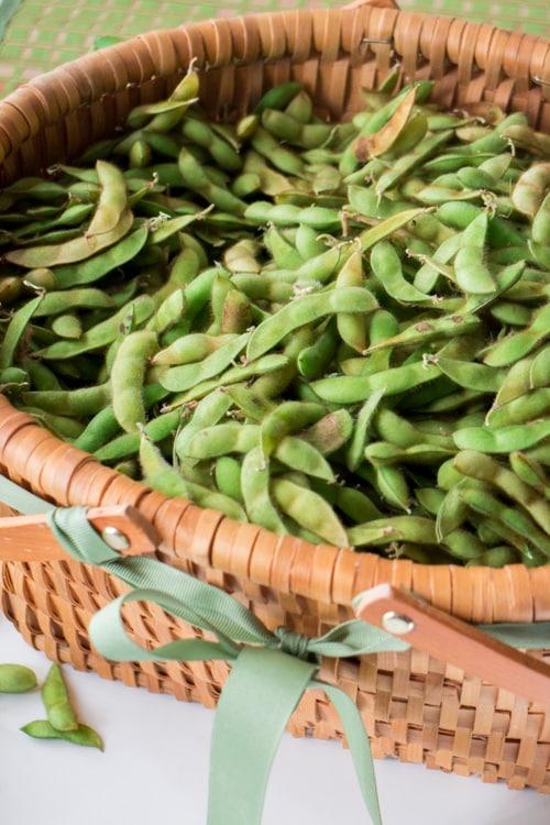 Soybean Edamame Pesto, a easy and delicious pesto recipe using soybeans!
