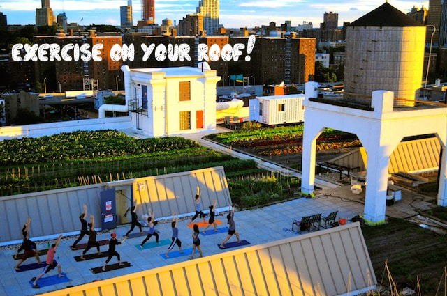 yoga-rooftop