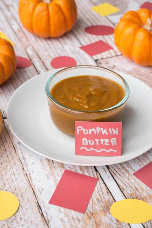 20 Minute Pumpkin Butter recipe made with healthy ingredients: pumpkin puree, apple cider, maple syrup, cinnamon, nutmeg and cinnamon. Pumpkin Butter is delicious on waffles, pancakes, toast, as a vegetable dip and more!