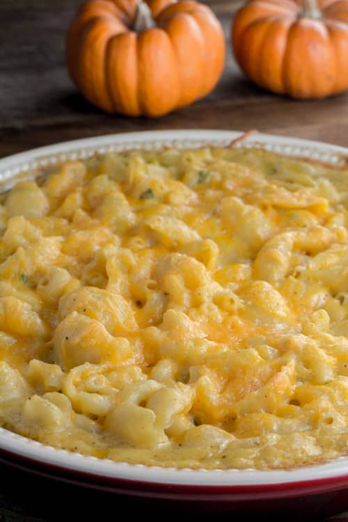 Extra Cheesy Pumpkin Macaroni and Cheese with Jalapenos! This cheesy recipe is pure comfort food, perfect to enjoy in the Fall season!