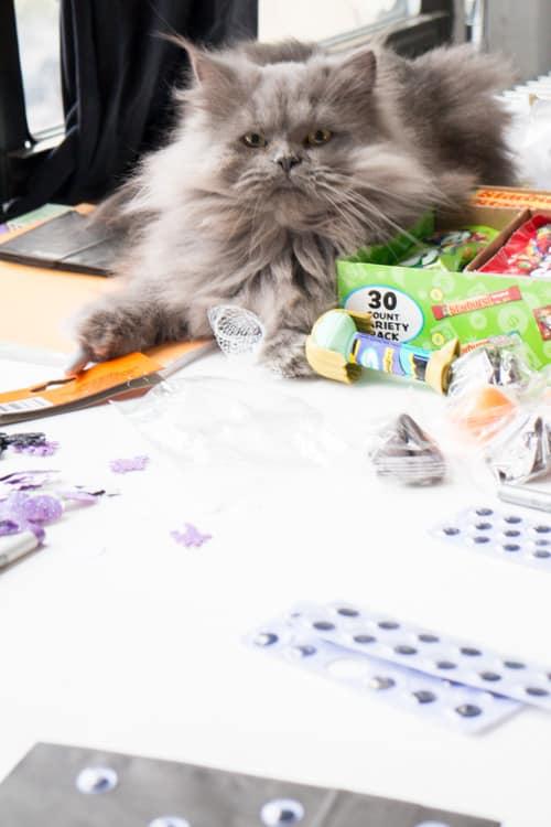 Fun Ideas for Hallowen Treat Bags_11