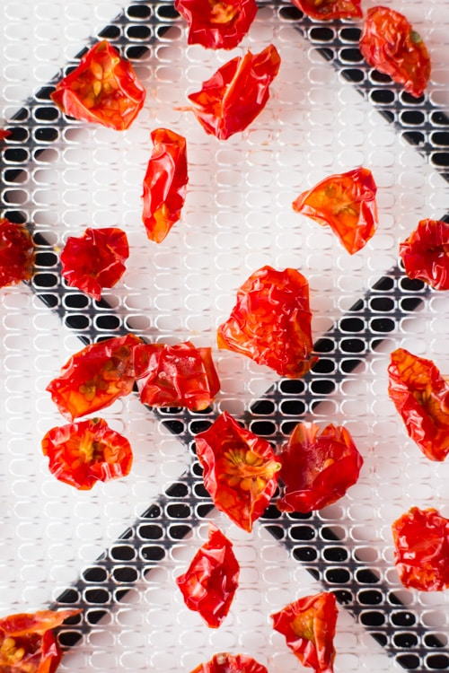 How to Dehydrate Tomatoes_8
