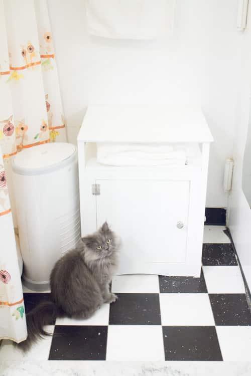 Blackhole Cat Litter Mat_6
