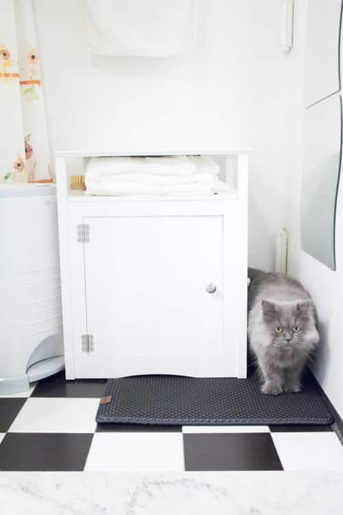 Blackhole Cat Litter Mat_7