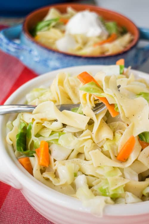 POLISH CABBAGE AND NOODLES or commonly called Haluski is a quick, easy, comforting recipe to make! This recipe is an authentic Polish dish passed on to me by my Polish grandmother! Your family is going to love this traditional bowl of cabbage and noodles for dinner!
