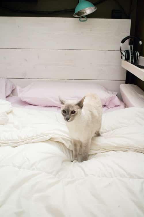 King Size Loft Bed DIY_1