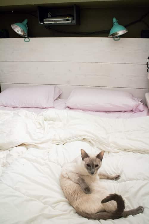 King Size Loft Bed DIY_4
