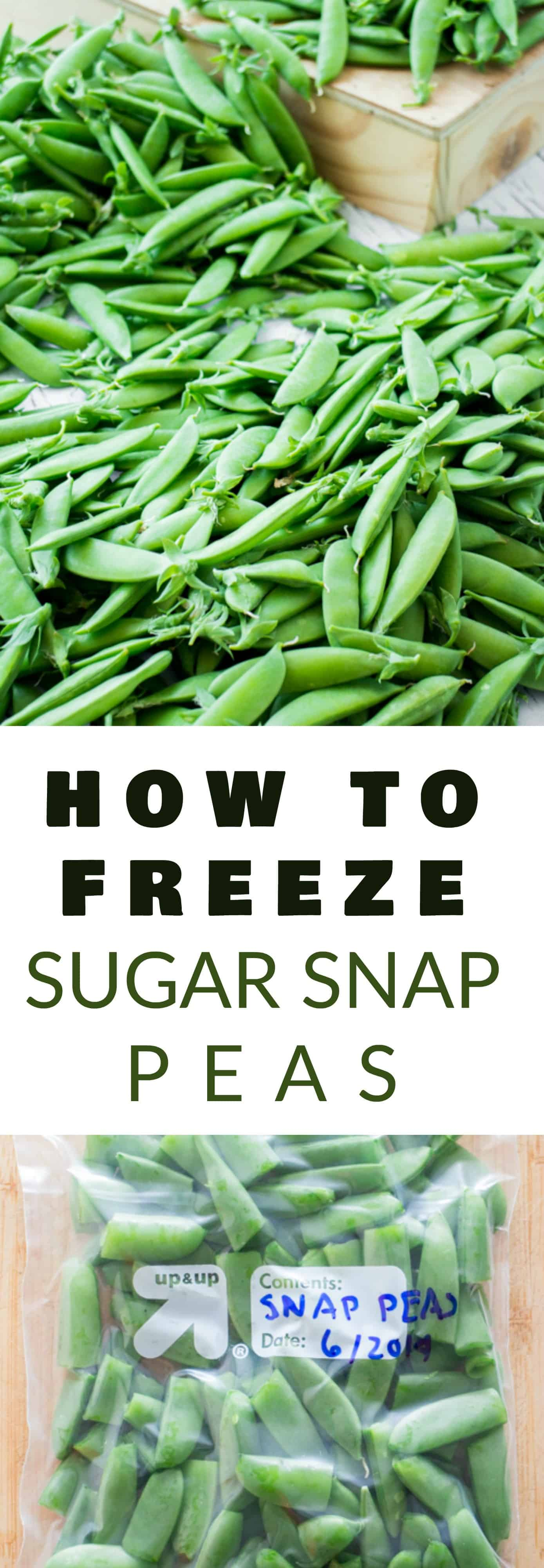 EASY Step by Step Instructions on how to freeze Sugar Snap Peas without blanching! This is a simple way to preserve your Summer Sugar Snap Peas to last for months without needing to can them!  I love freezing peas to use in Winter soups, casseroles and stir fry meals!