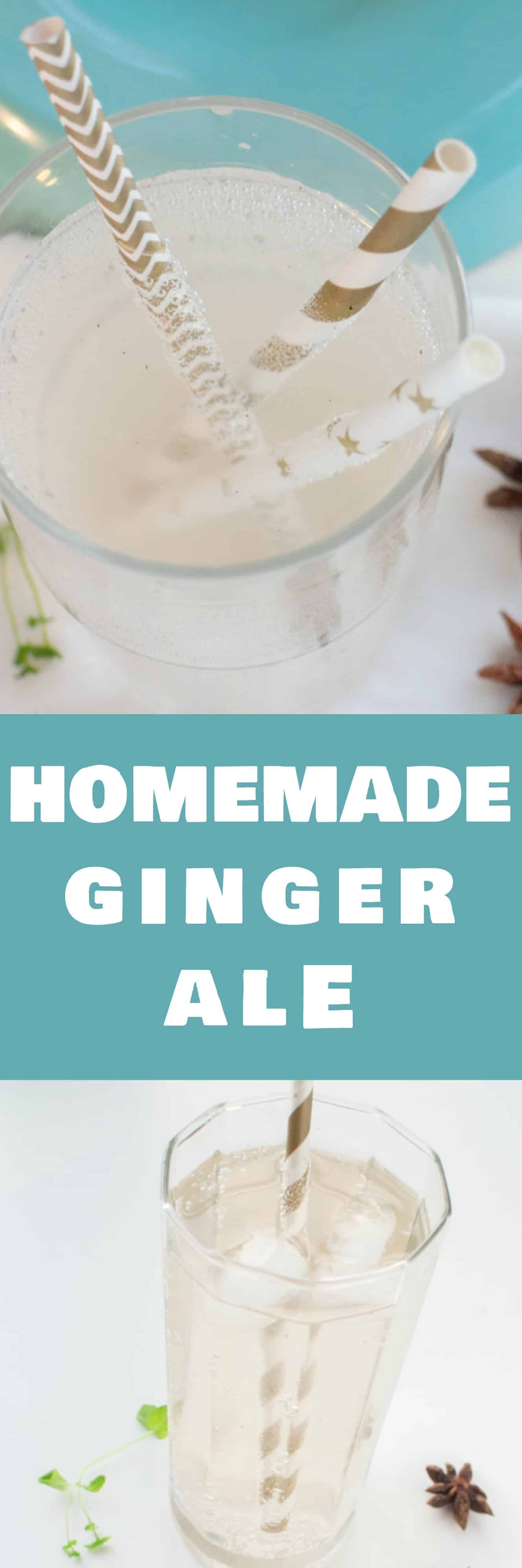 HOMEMADE Ginger Ale Soda! This DIY simple syrup recipe is easy to make! Make your favorite flavor soda healthy with fresh ingredients and a sparkling water sodastream machine!