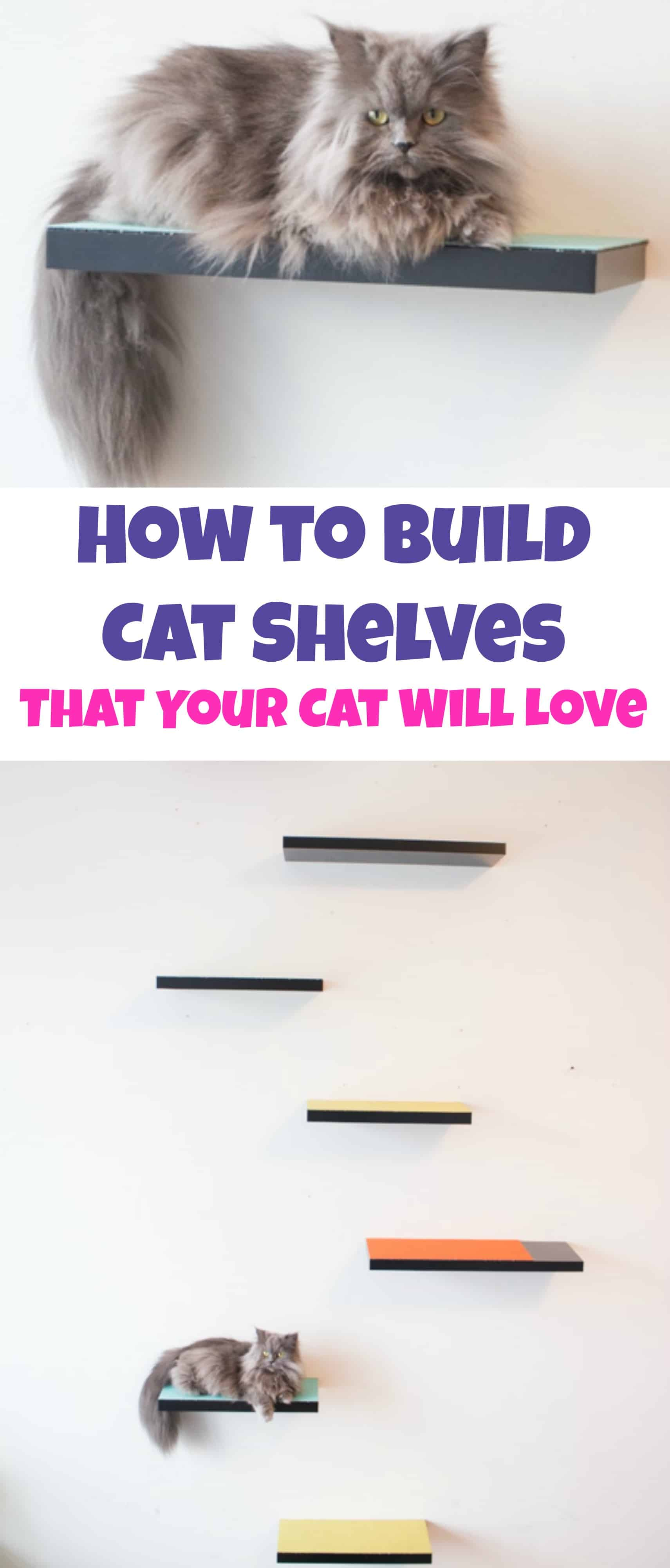 How to build cat shelves that your cat will love brooklyn farm girl how to build cat shelves your cat will love this is a easy diy project amipublicfo Image collections