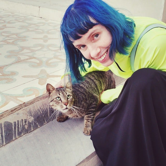 This cat came to me and was very unsure of me when I picked it up and gave it kisses. I will take any cat love I can get at this point. #cats #catsofinstagram #catlady #meow #doha #qatar #bluehair