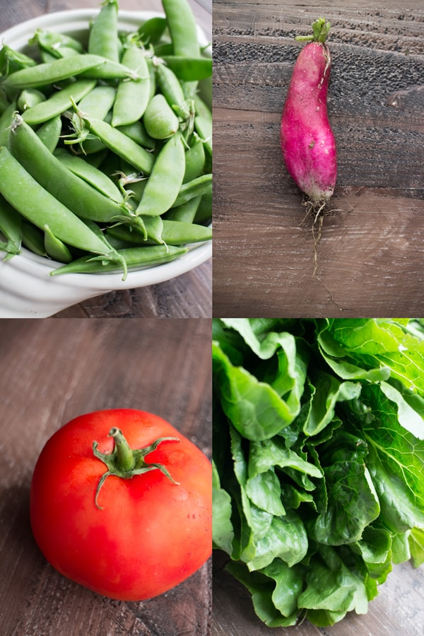 Simple-Pea-Garden-Pasta-_27