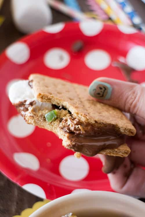 Crazy Candy Smores Indoors Microwave Recipe_20