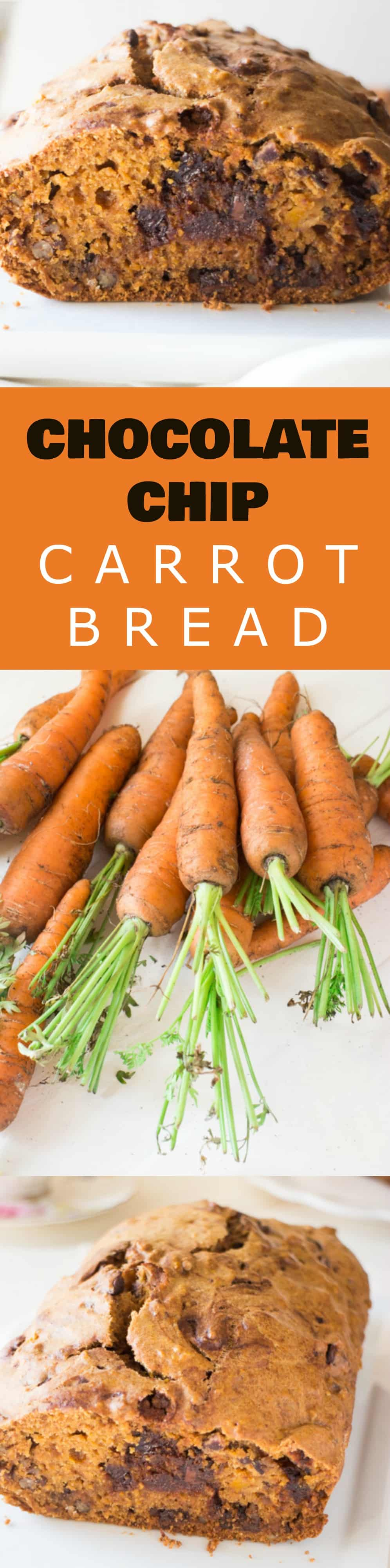 EASY CHOCOLATE CHIP Carrot Bread recipe! This homemade loaf uses fresh carrots and takes 1 hour to bake! The bread tastes just like cake - it's so moist! This is one of my BEST carrot recipes! Serve for breakfast, dessert or snack!