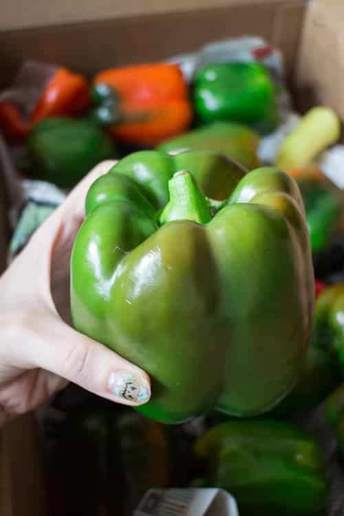 Dad Rules Green Peppers_4