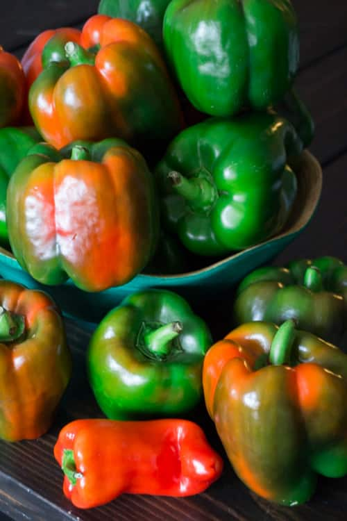 Dad Rules Green Peppers_9