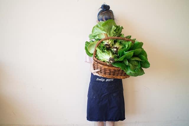 basket filled with lettuce