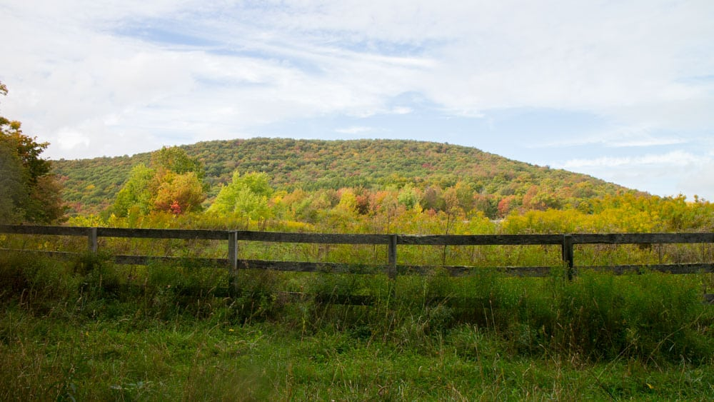 New Adventure    We bought land in Upstate NY! And this is
