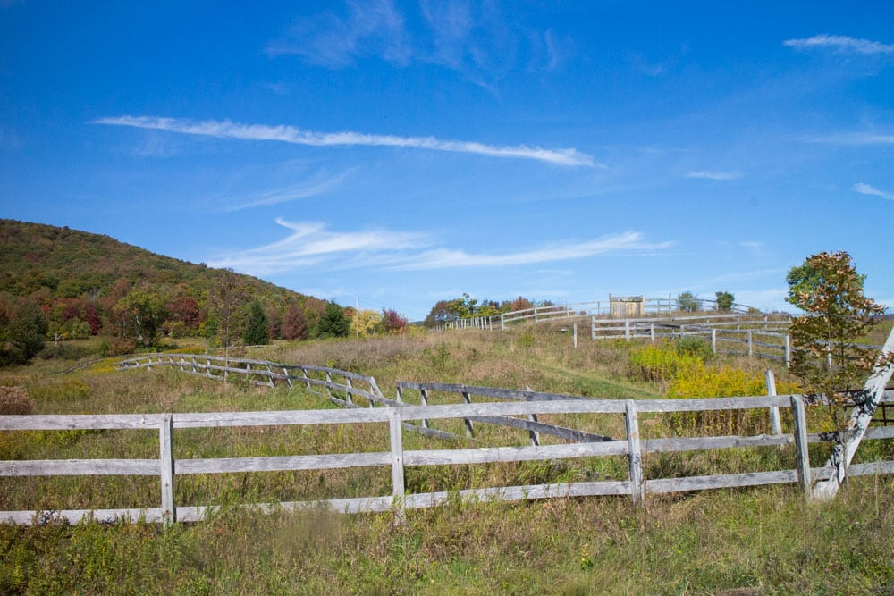 Buying Land Upstate_9