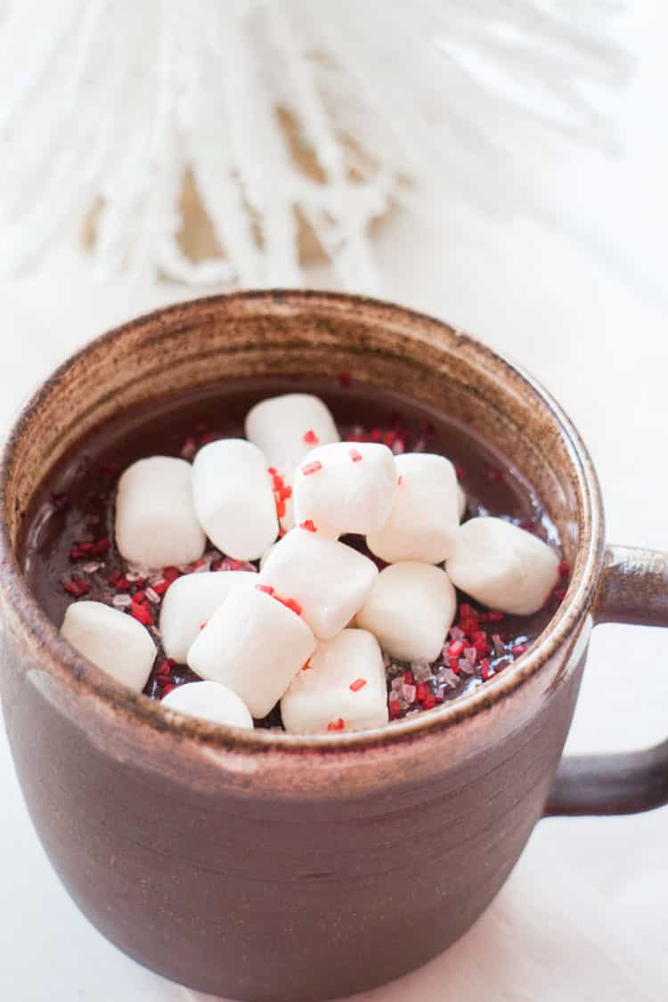 Double Chocolate Sea Salt Hot Cocoa is a rich and creamy hot chocolate recipe! Just a sprinkle of sea salt on top helps balance out the double chocolate. Chocolate Lovers, this recipe is for you!