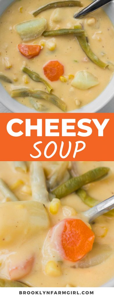 This vegetarian Cheesy Vegetable Soup is loaded with a creamy cheddar cheese sauce, lots of vegetables, and plenty of flavor! A steaming hot bowl with fresh parsley on top is the answer to all of your comfort food cravings.