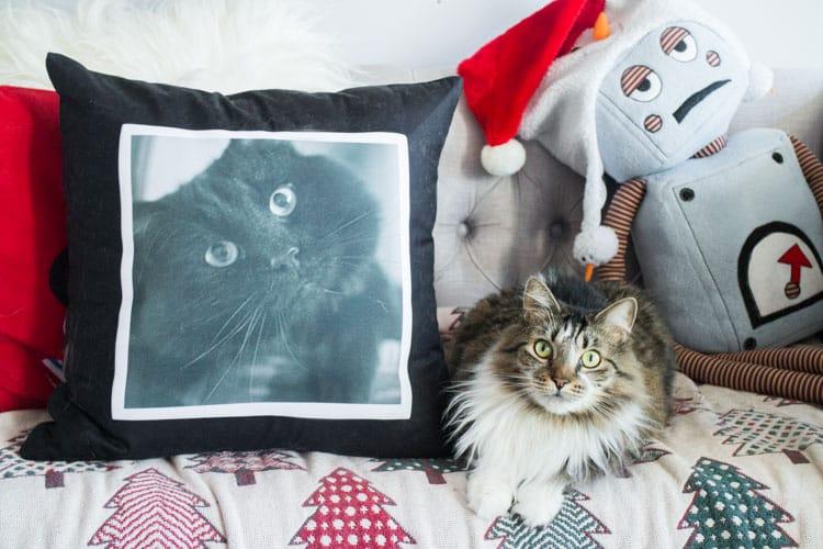 Custom Printed Christmas Gifts_11