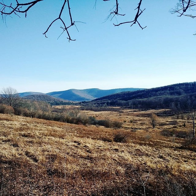 View from the land today. One day I'll be having my morning tea out here. ? #pandmupstateadventure #catskills #newyork #landscape #view