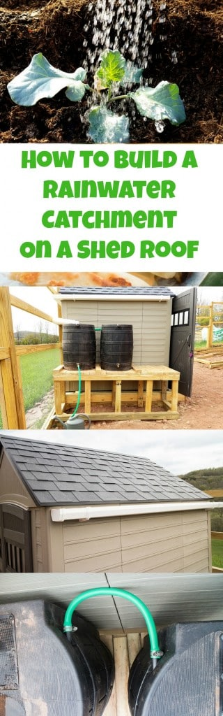It's easy to attach gutters onto your shed roof to collect water! Perfect solution for catching rainwater for your garden.