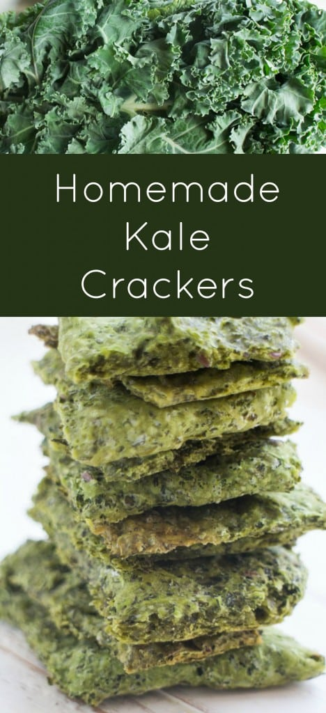 Easy homemade kale crackers recipe made by combining kale and flour.   They are sprinkled with salt to make a healthy snack!  I love these as a alternative to kale chips!
