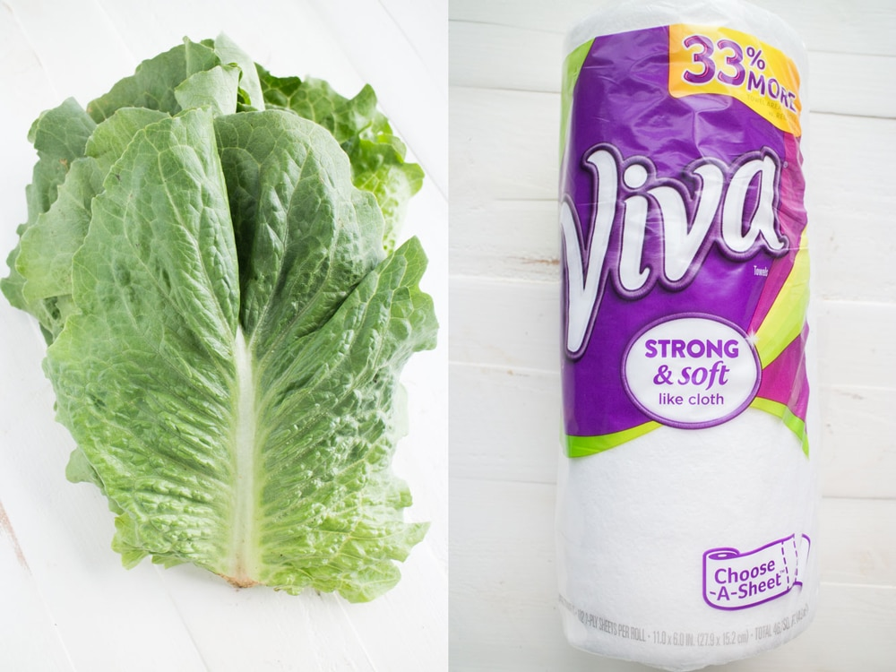 Use paper towels to keep your lettuce leaves and sugar snap peas fresh for weeks. The paper towels help remove moisture that can make your vegetables go bad.