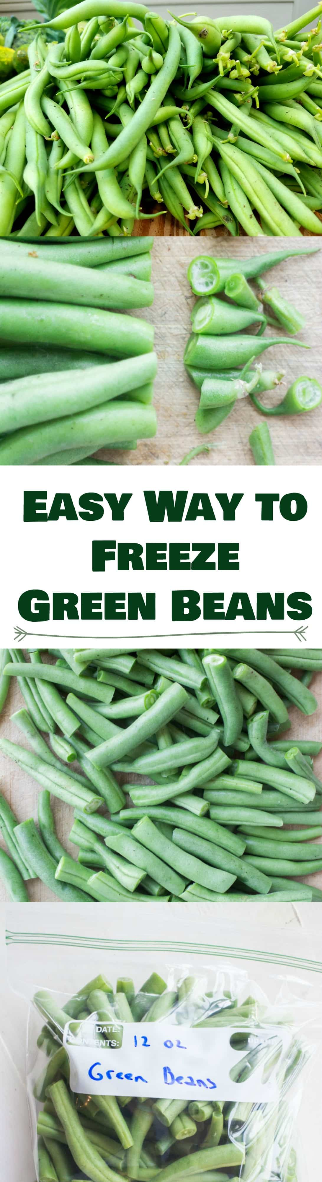 Pin How To Freeze Fresh Green Beans Without Blanching for later:
