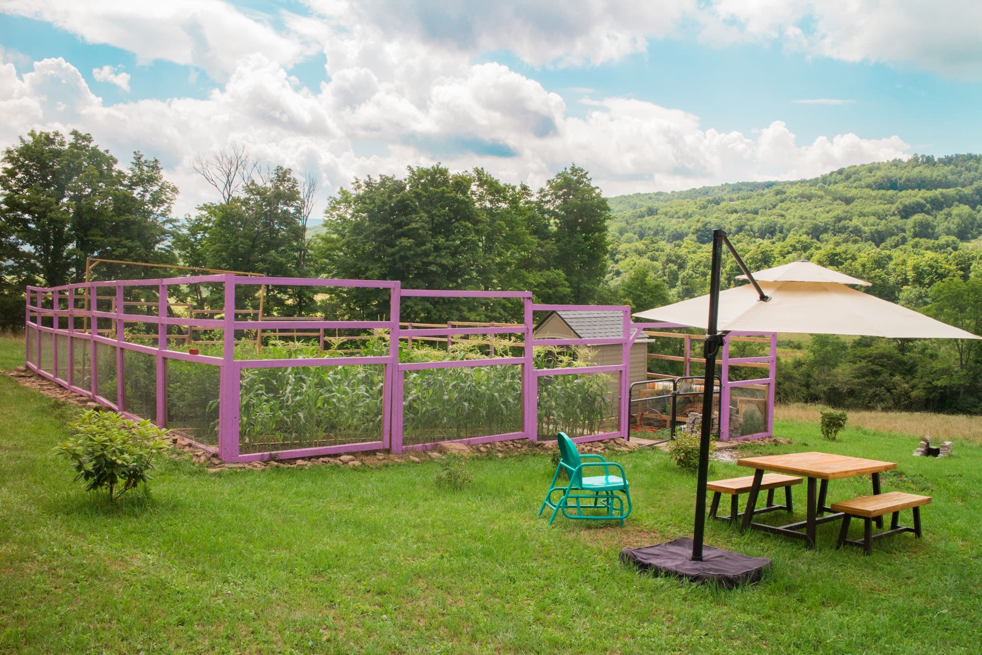 Brooklyn Farm Girl's Colorful Vegetable Garden in Upstate New York. Purple Pink Garden / Garden Inspiration!