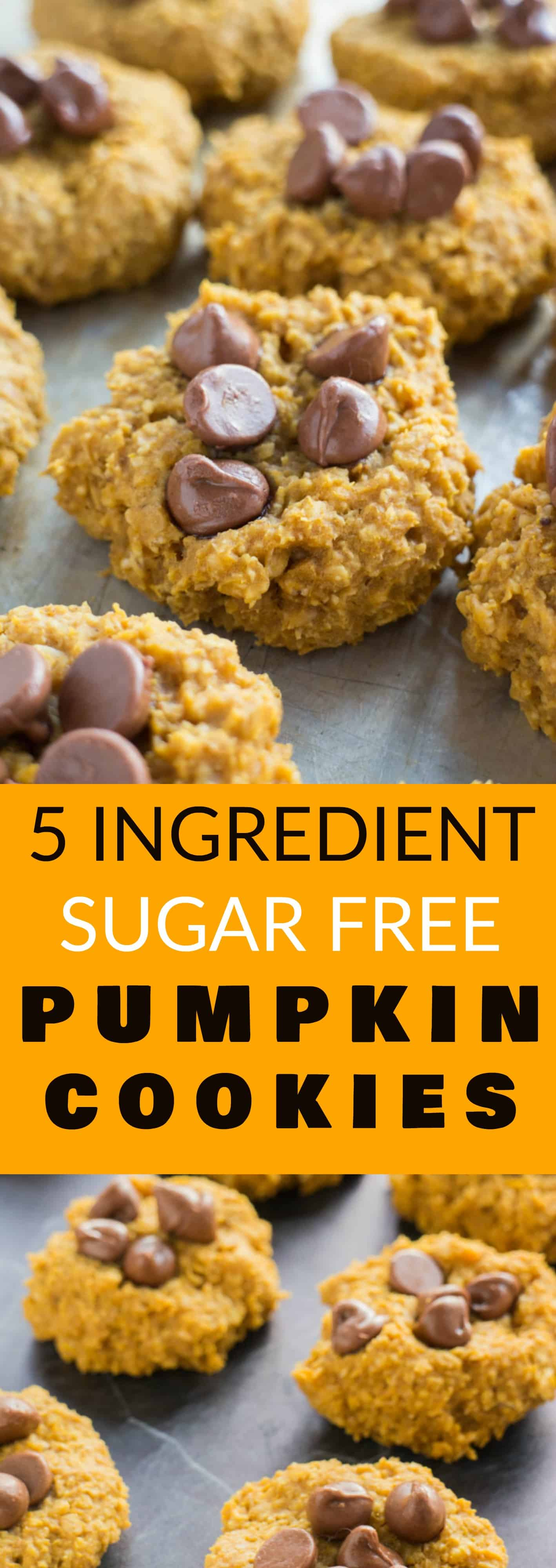 EASY to make 5 Ingredient Healthy Pumpkin Cookies recipe! These soft Pumpkin Oatmeal Cookies are sugar free, instead using maple syrup!  Make sure to add chocolate chips on top to make them extra delicious!