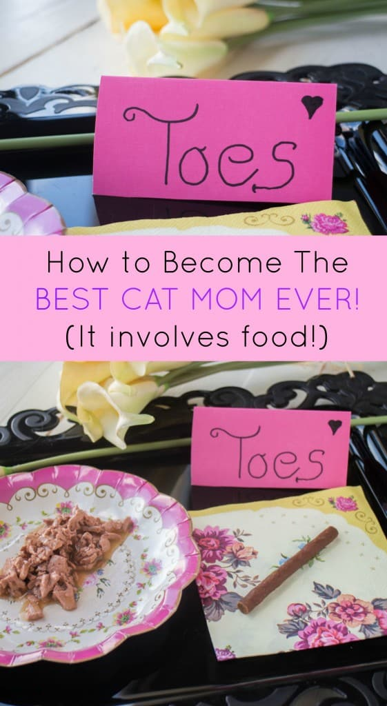 Do you love your cat? Do you want to be the best Cat Mom ever? Then serve them a tray of food and treats and wait for the kisses in return!