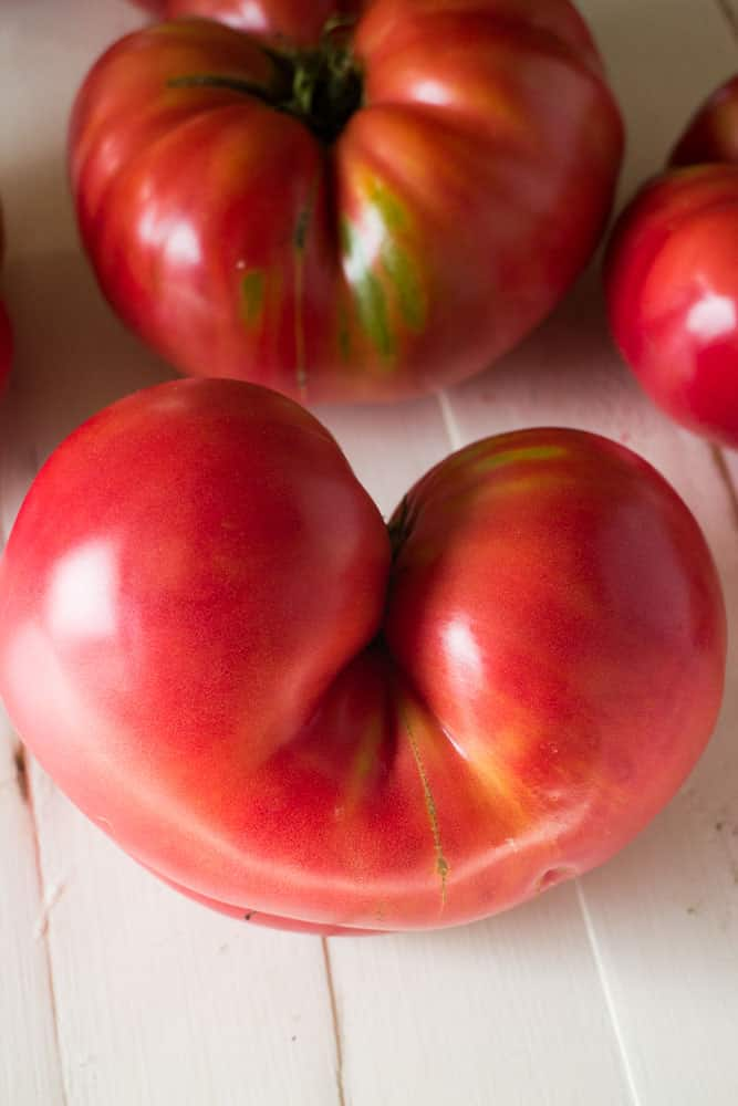 big-tomatoes_1